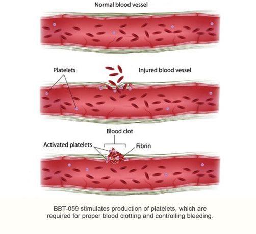 BBT-059: a long-acting IL-11 analog for treating bleeding disorders, <br>Acute Radiation Syndrome, and ischemia-reperfusion injury
